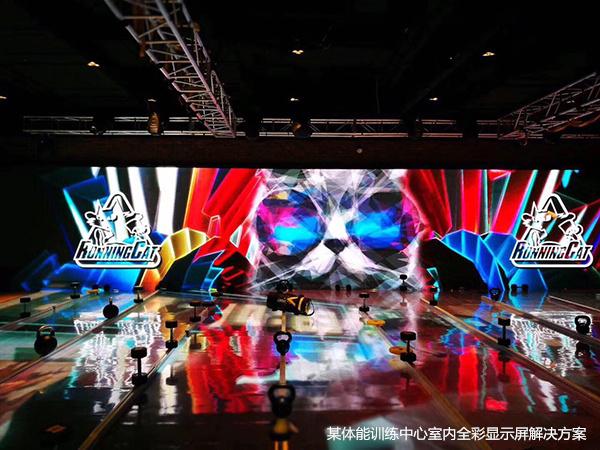 健身房LED屏+互动系统